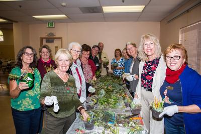 2016 VGC Holiday Dish Gardens Project