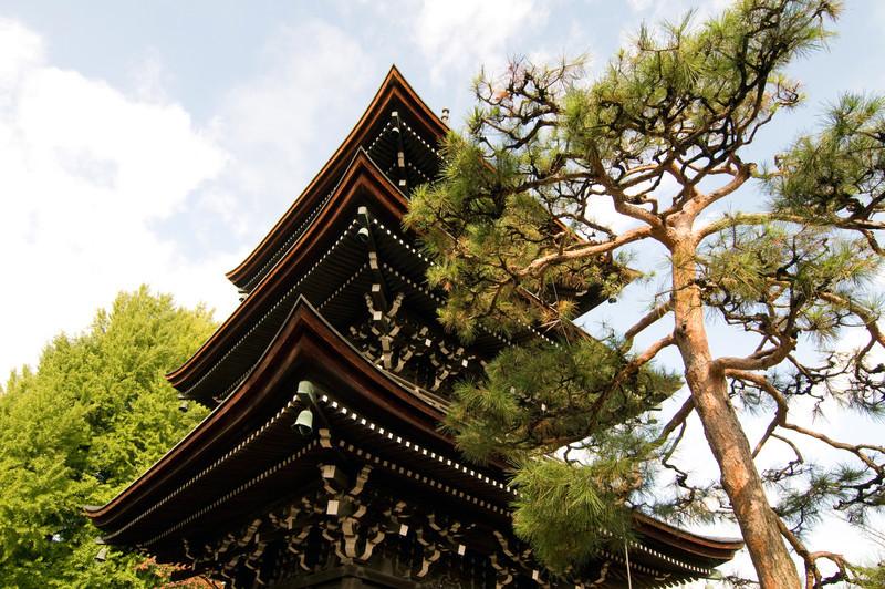 Japan_2010_NAT9364.jpg