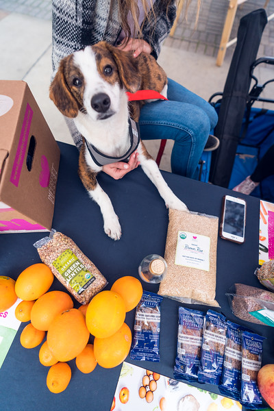 Grossmont Center San Diego Made Pop-Up Market at HolidayFest-109.jpg