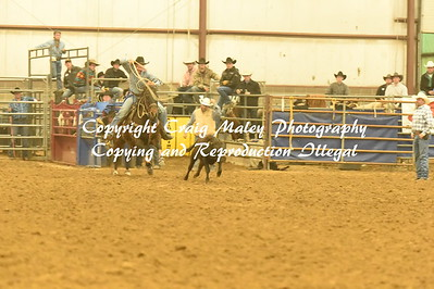 CALF ROPING 2ND GO 11-26-2016