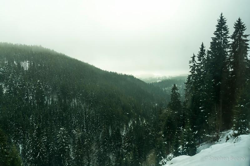 Black Forest Line-7795.jpg