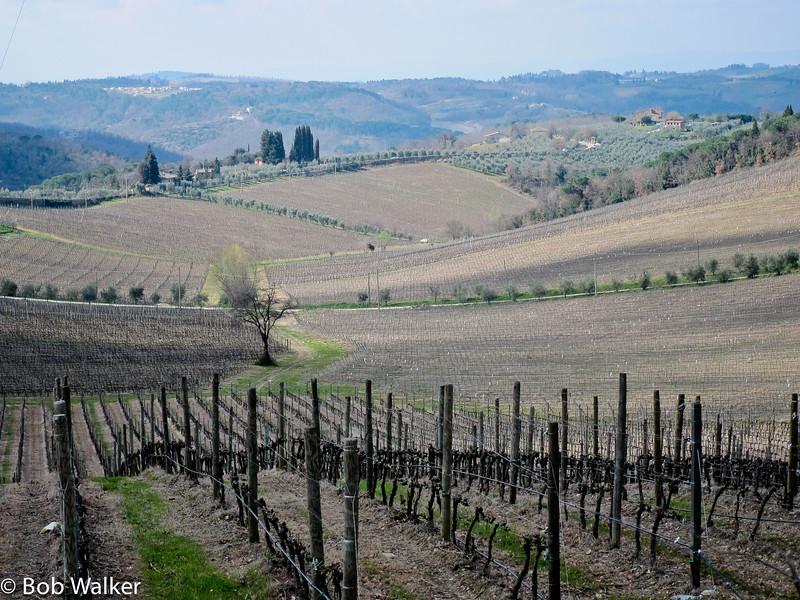 Day 6 travels took us to the Chianti region around Castellina in Chianti, and Radda in Chianti