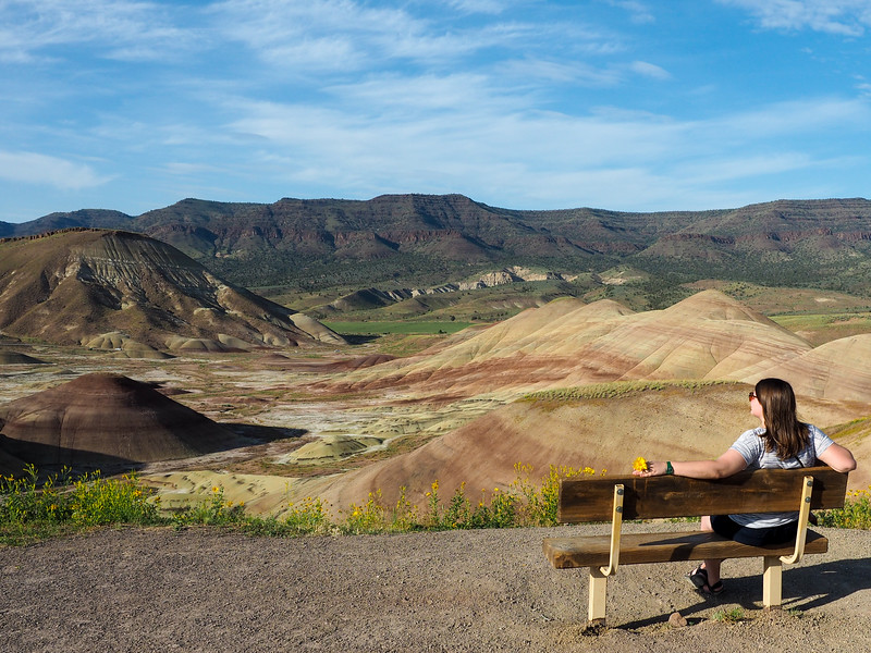 Painted Hills Overlook