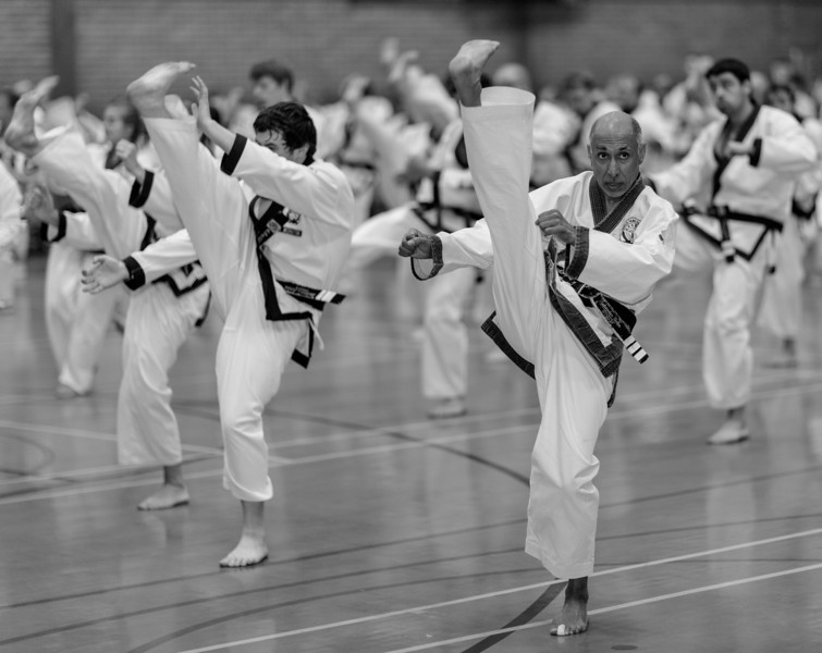 Tang Soo Do (Aug 2012)_7752459188_o.jpg