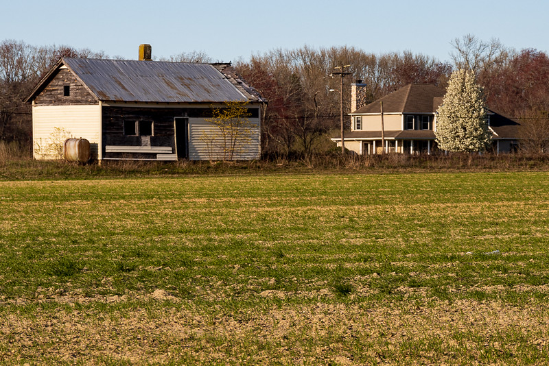 2021-Week 15 - A tale of two homes (Vineland).jpg