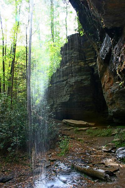 Pisgah Forest 9-30-12 53.jpg