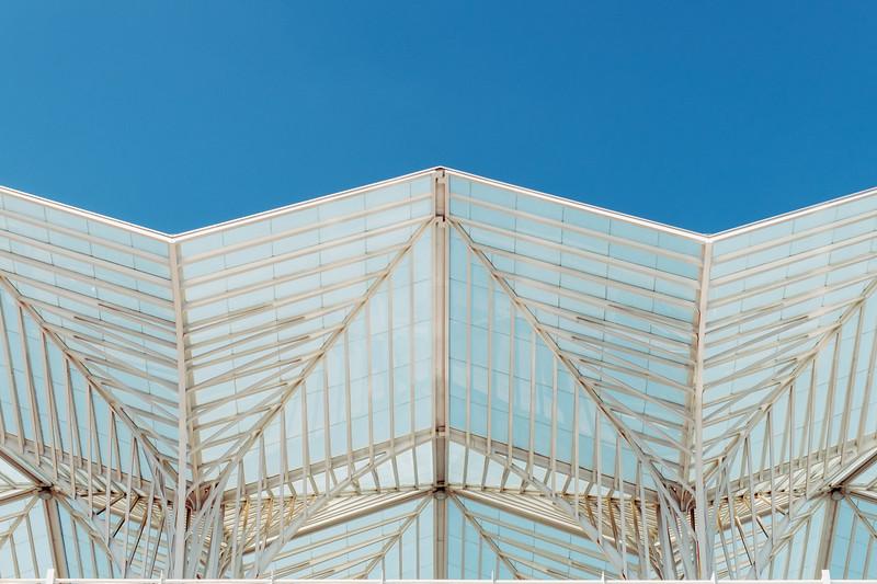Detail of Lisbon Oriente station by Santiago Calatrava