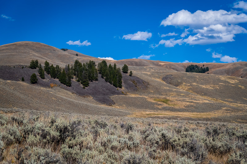 Lamar Valley 2 091818.jpg
