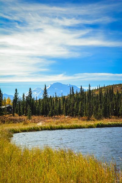 Denali-National-Park-131.jpg
