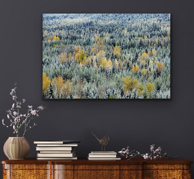 'Autumn Snowfall' Canvas Wrap or Float Mount Metal Print