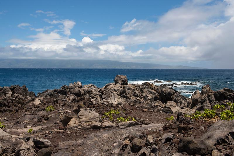 hawaii_0110.jpg