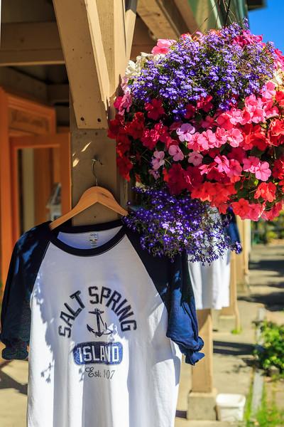 Saltspring Teeshirt Pt-.jpg