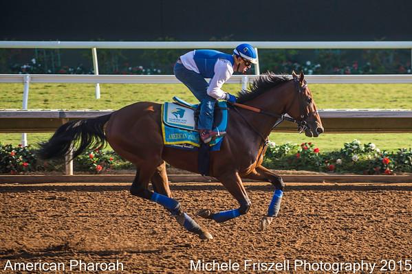 America Pharoah & Del Mar Jockies & horses 2015