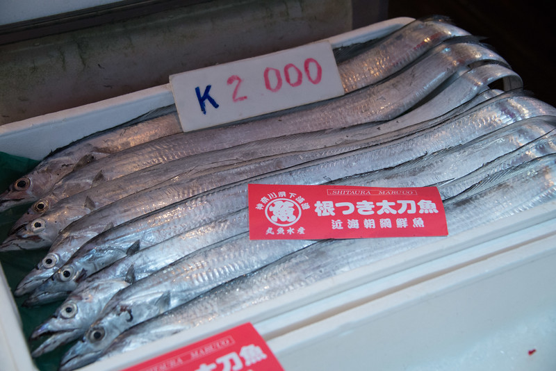 Tokyo Fish Market-6999