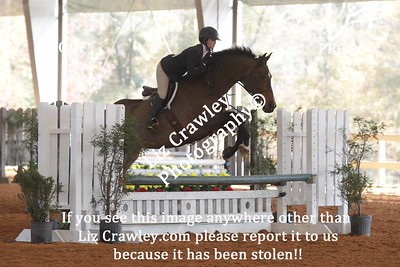 PALMETTO MEDAL AND DERBY FINALS HORSE SHOW 2017