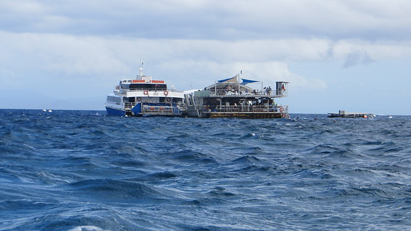 JULY 5, 2018 TRIP TO GREAT BARRIER REEF