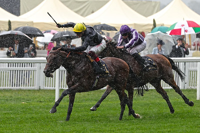 3 Prince of Wales's Stakes Gr1 1m2f