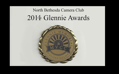 2014 Glennie Award