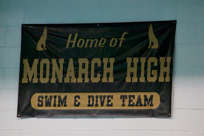 MHS Girls Swim & Dive 2014-2015