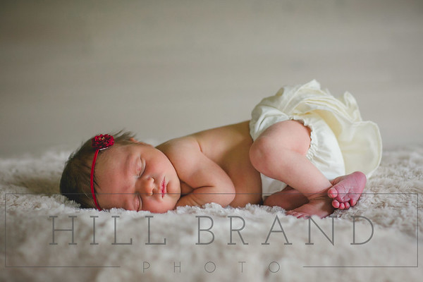 Hailey: Newborn Session