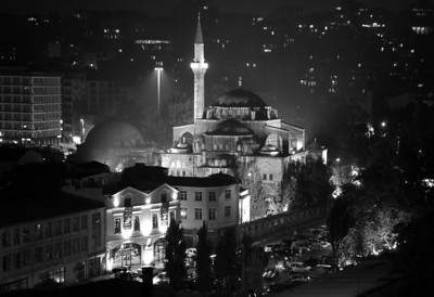 Turkey B&W