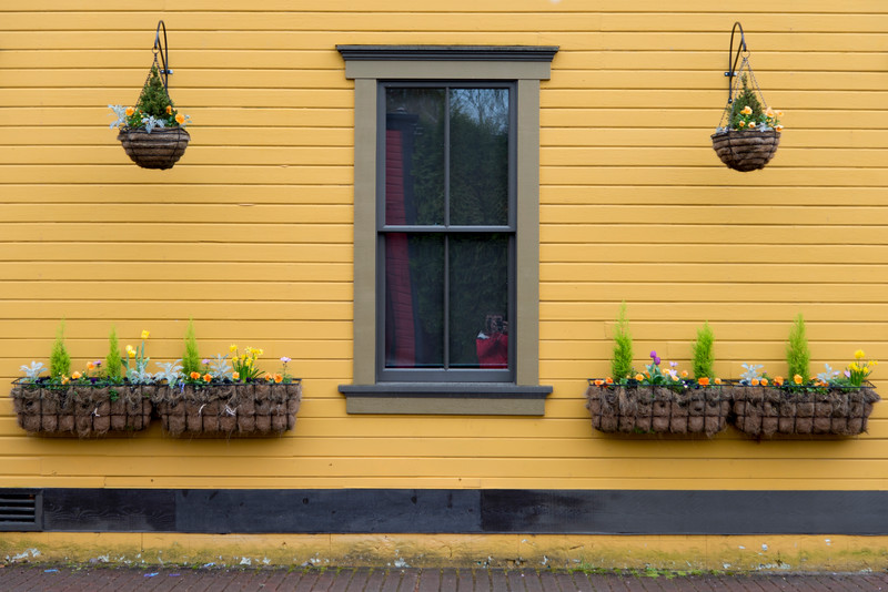 Hanging baskets on the exterior wall of a house, Snoqualmie, Washington State, USA