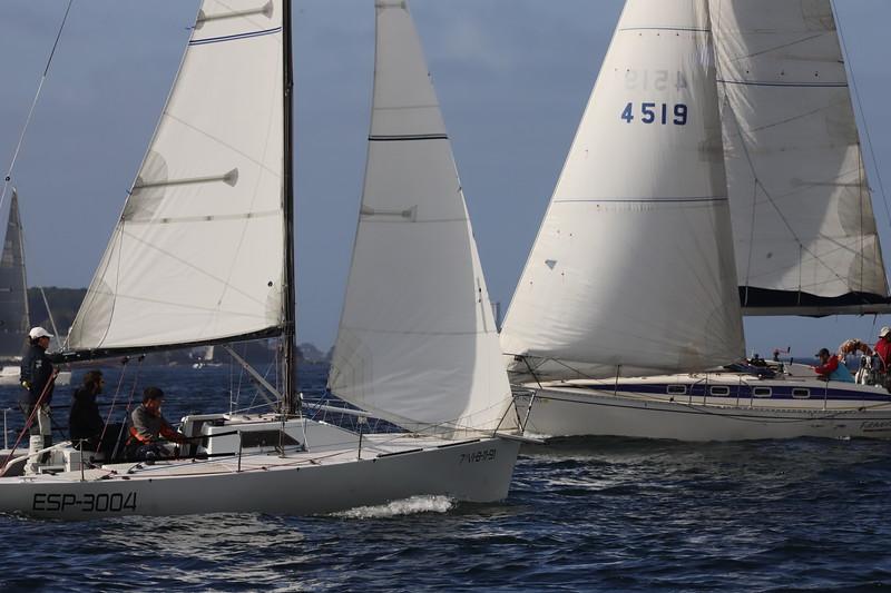 b'4519 , 76-8395 , FURAVEN , 7 , V-8-11-91 , ESP-3004 , '