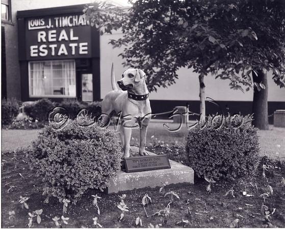 Morley's Dog