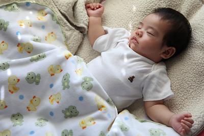 2012-07-08 Zaeda Sleeping