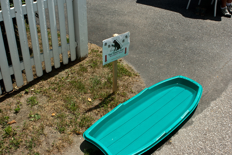 These folks had thoughtfully left a dog watering spot.