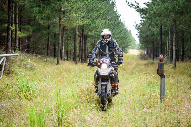 2018 KTM New Zealand Adventure Rallye - Northland (271).jpg
