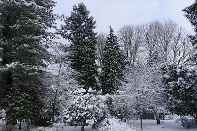 Snow & Ice 2016