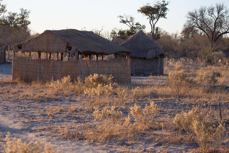 Africa1358.jpg