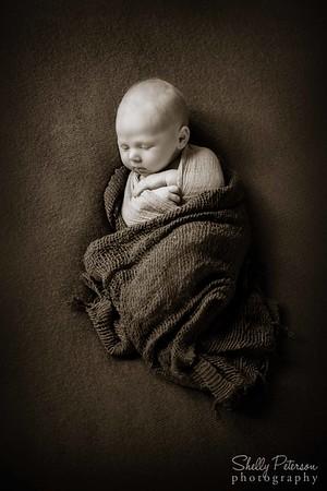 Searcy Newborn
