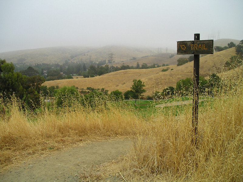 We just came up this trail, just over a quarter mile and you can see how far down the golf course already is. In the fog.