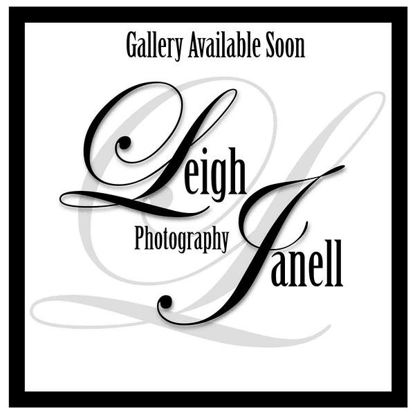 GalleryAvailSoon.jpg