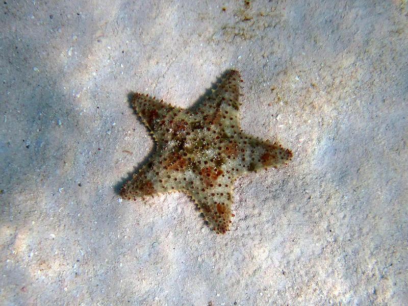 20100609_beaches_292-a.jpg