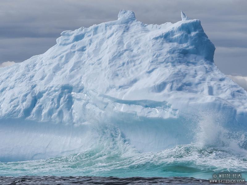 Iceberg 28    Photography by Wayne Heim
