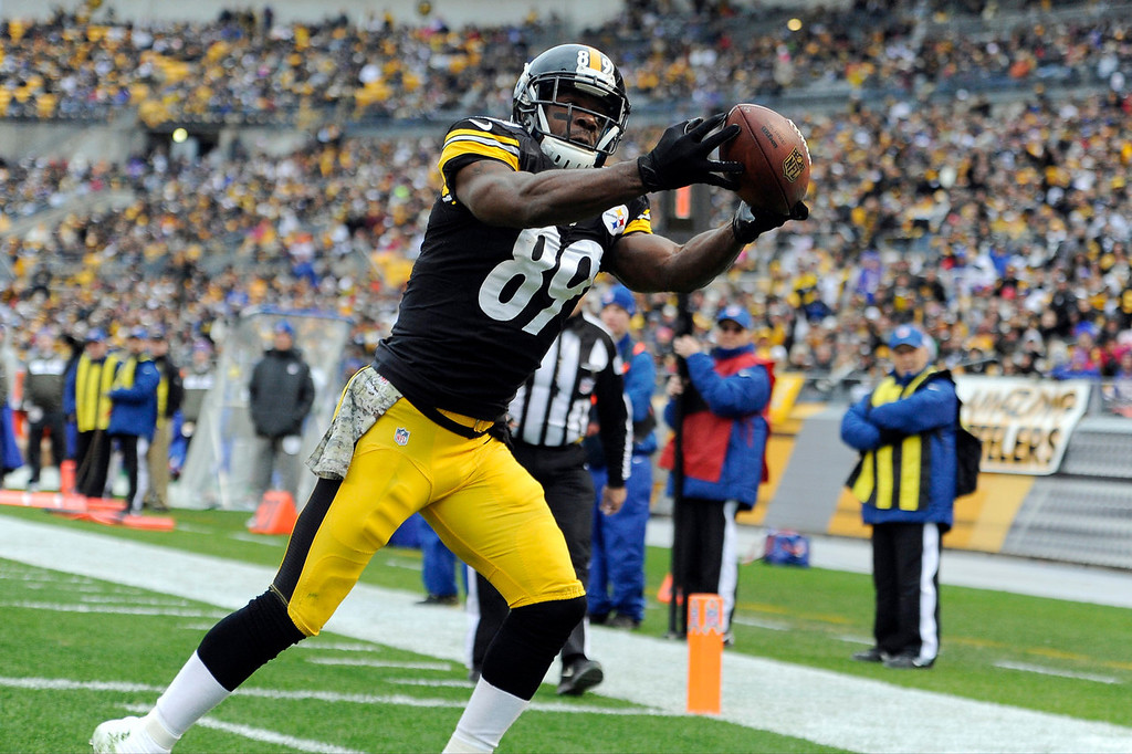 . Pittsburgh Steelers\' Jerricho Cotchery pulls in a touchdown pass during the first half of an NFL football game against the Buffalo Bills, Sunday, Nov. 10, 2013, in Pittsburgh. (AP Photo/Don Wright)