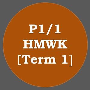 P1/1 HMWK T1