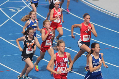 HS State 2015