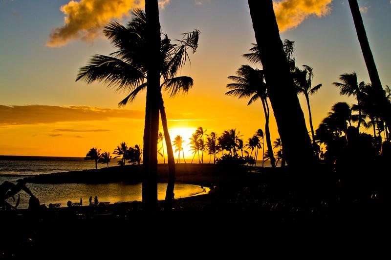 Journey into Oahu Photograph 187