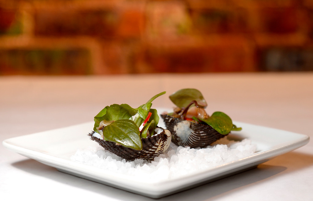 . Blood Clams with chilies and Bergamot Oil at Jax Fish House in  Boulder, Colorado January 23, 2015. Boulder Daily Camera/ Mark Leffingwell
