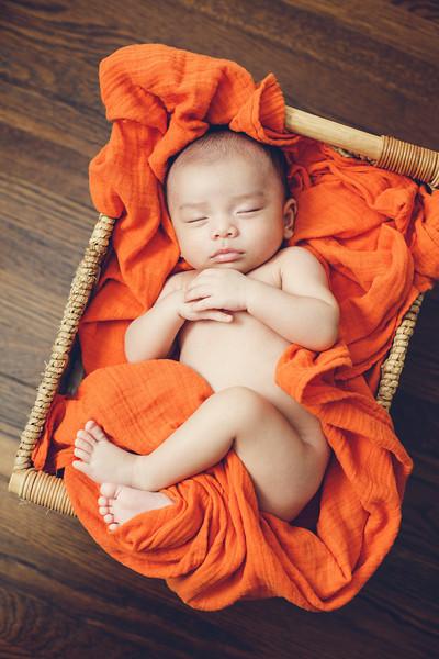 newborn-portrait-0039.jpg
