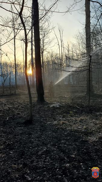 2021-03-14 - Brush Fire - LCFR-2021-00008373