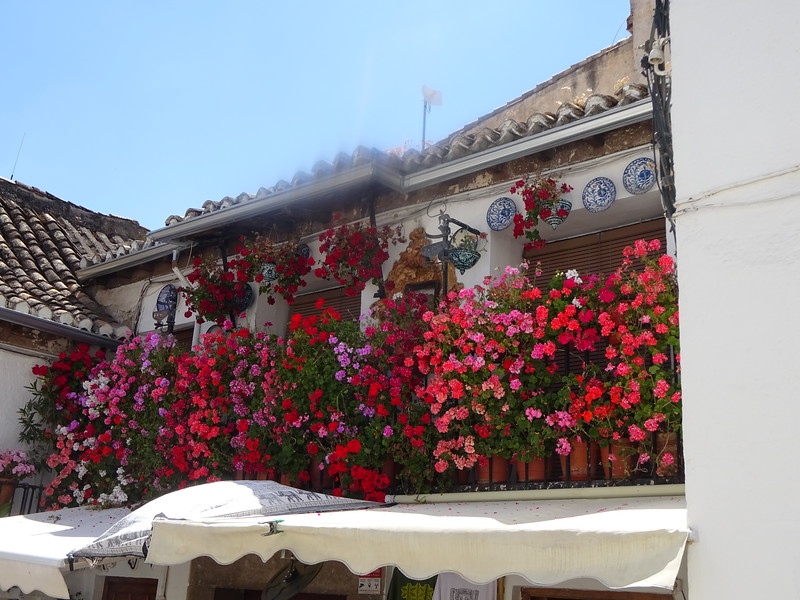 Granada is also a city of immense charm and wonderful, friendly people.