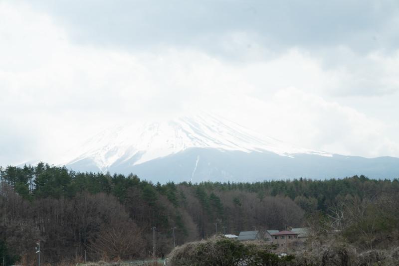 20190411-JapanTour-5269.jpg