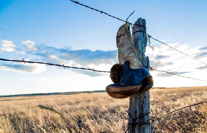 Roadside fence post in Treasure Co