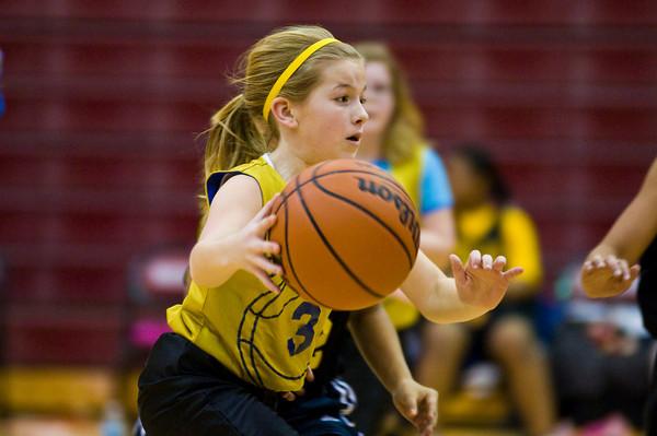 GV Basketball