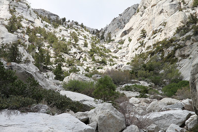 NRT / Meysan Lakes Trail - June 12, 2010